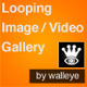 Looping Image or Video Gallery - VideoHive Item for Sale