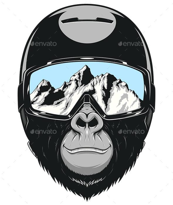 Monkey Wearing a Helmet - Sports/Activity Conceptual