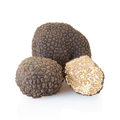 Black truffles and half on white - PhotoDune Item for Sale