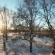 Aerial Shot Winter Landscape, Sun And Trees - VideoHive Item for Sale