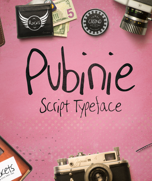 Pubinie Script Typeface - Hand-writing Script
