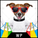 Pet Store - WordPress WooCommerce Theme for pets and vets Nulled