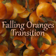 Falling Oranges Transition - VideoHive Item for Sale