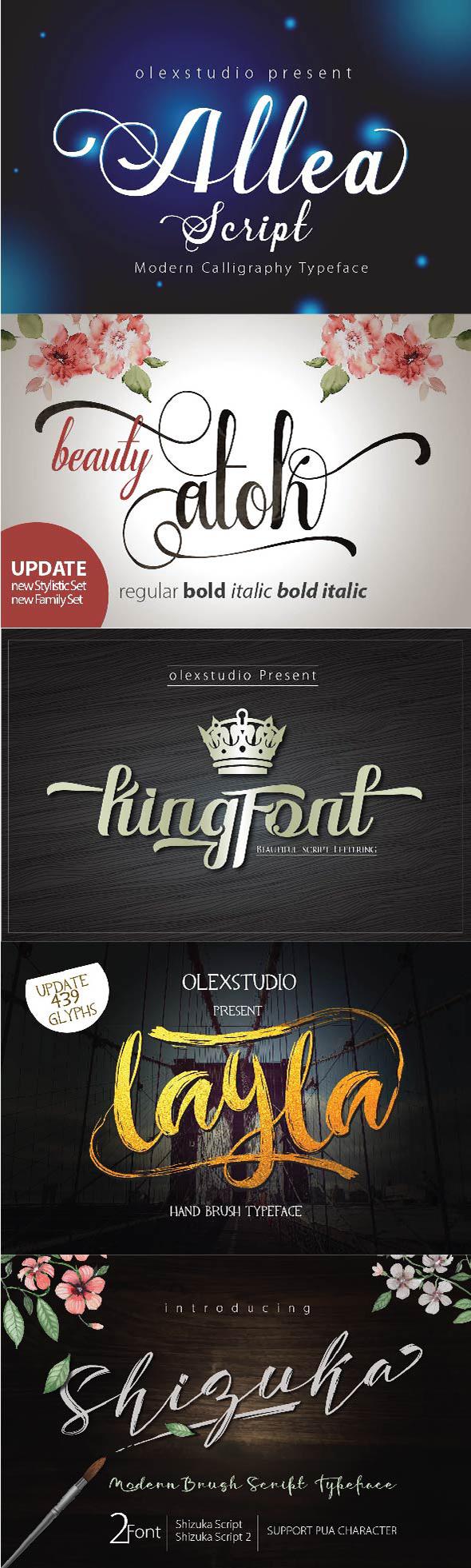January 5 Script Font Bundle - Fonts