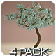Money Tree - 4 Pack - VideoHive Item for Sale