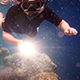 Snorkeler Diving Along Coral - VideoHive Item for Sale