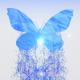 Splashing Butterfly Logo Reveal - VideoHive Item for Sale