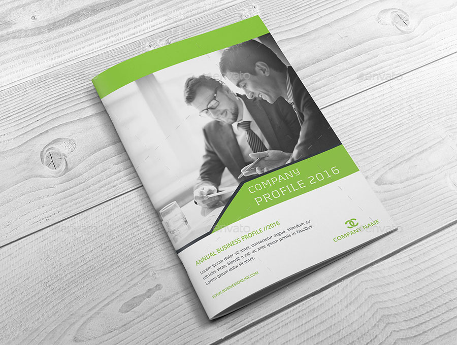 Business Profile Brochure Template  Professional Business Profile