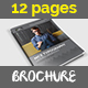 Simple Brochure Catalog Indesign Template – 12 Pages - GraphicRiver Item for Sale