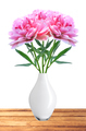 beautiful pink peony flowers in white vase on table isolated on - PhotoDune Item for Sale