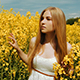 Beautiful Girl Walking Through The Tall Grass of a Field - VideoHive Item for Sale