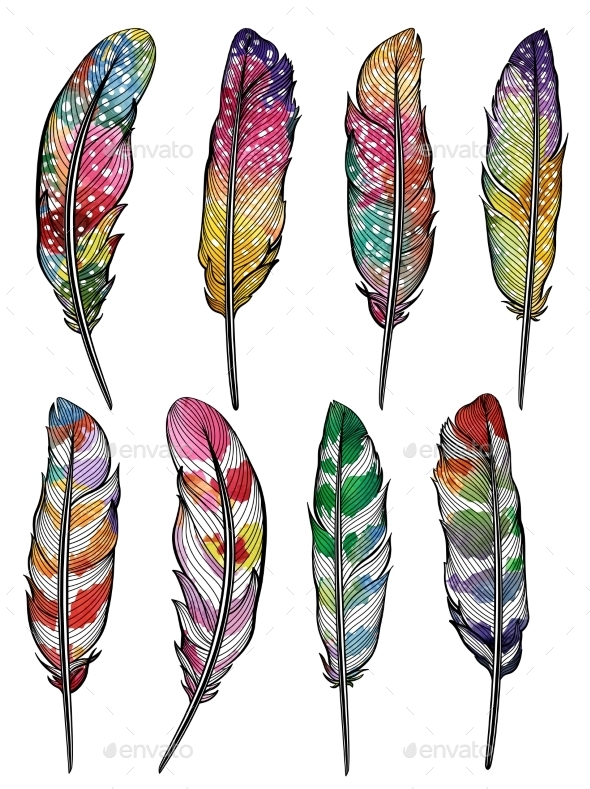 Set Of Isolated Colorful Feathers. Vector, EPS10 - Decorative Symbols Decorative