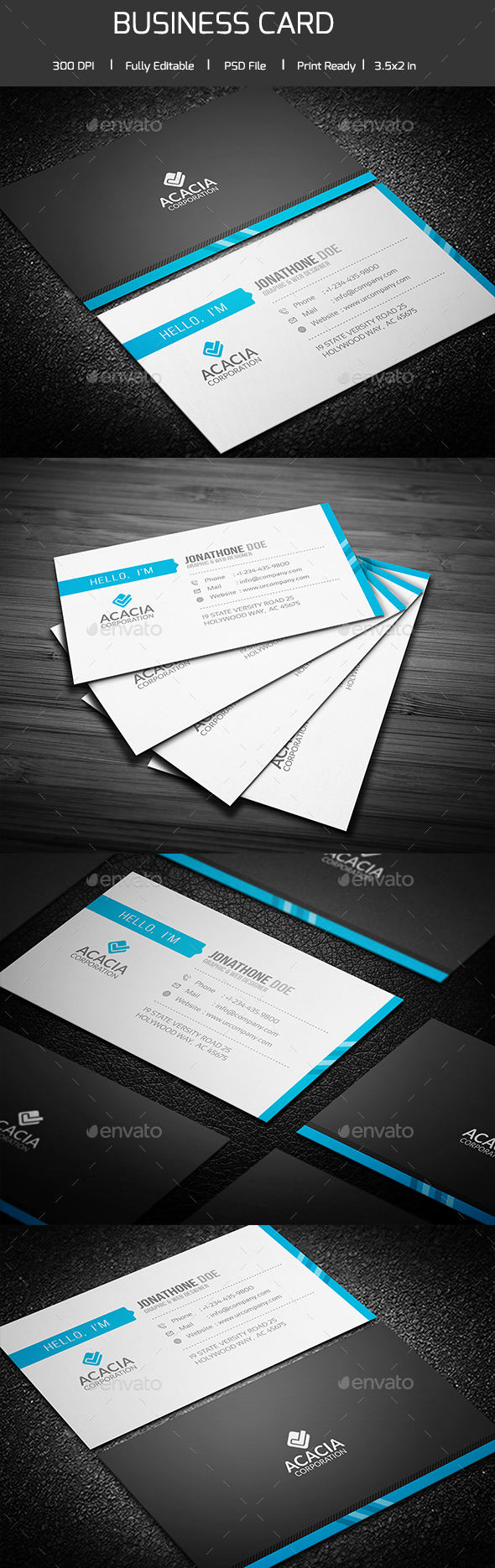 Professional Business Card V-02 - Corporate Business Cards