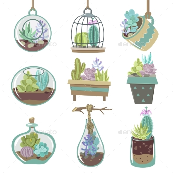Succulents Icons Set - Flowers & Plants Nature