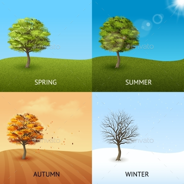Tree Concept Set - Seasons Nature