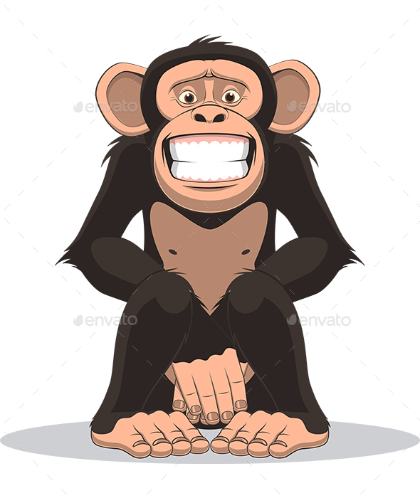 Monkey - Animals Characters