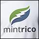 Mintrico