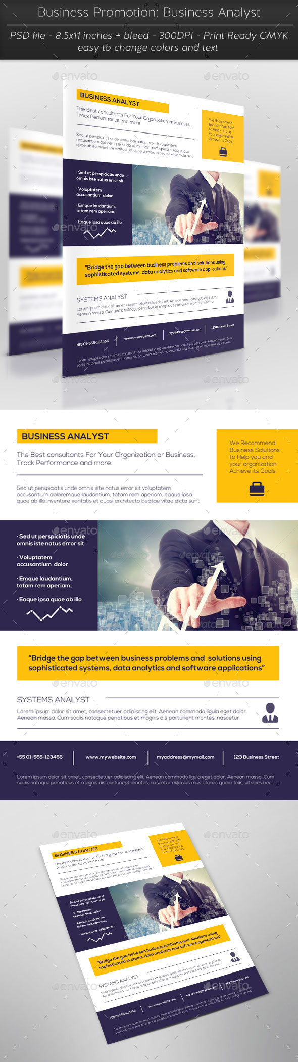 Business Promotion: Business Analyst - Flyers Print Templates