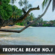 Tropical Beach no.1 - VideoHive Item for Sale