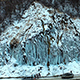 Frozen Waterfall in Winter - VideoHive Item for Sale