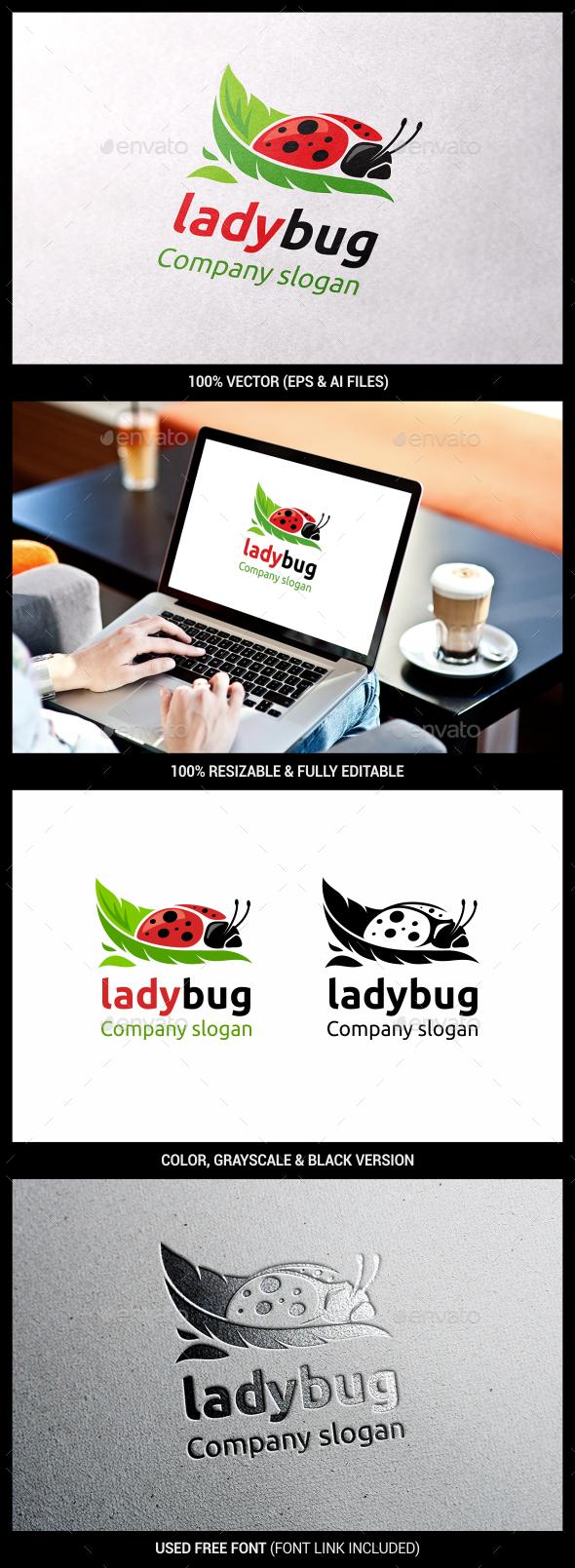 Bug - Animals Logo Templates