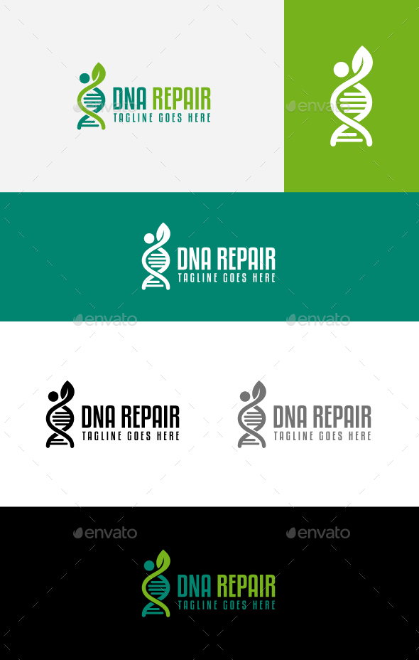 DNA Repair - Symbols Logo Templates