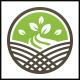 Plant Grow Logo - GraphicRiver Item for Sale