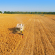 Harvesters Work on Cornfield 1 - VideoHive Item for Sale