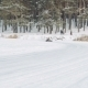 Kart Racing On The Frozen Lake  - VideoHive Item for Sale