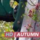 Cutting Thorn Hedge - VideoHive Item for Sale