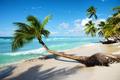 caribbean tropical sea - PhotoDune Item for Sale