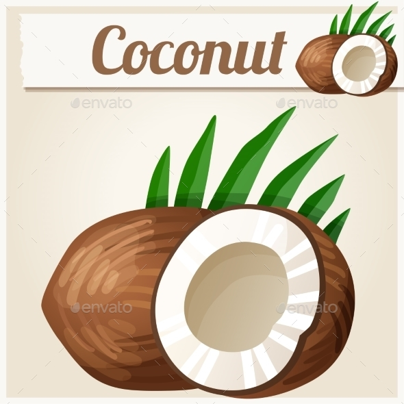 Coconut. Detailed Vector Icon - Food Objects