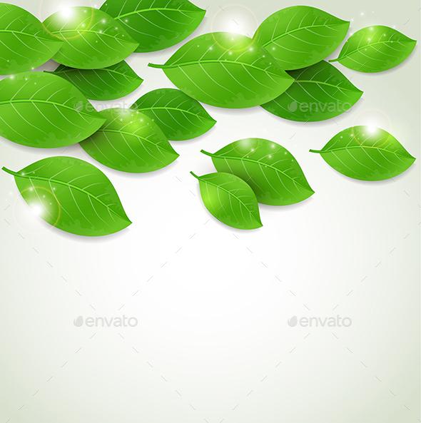 Falling Fresh Green Leaves - Flowers & Plants Nature