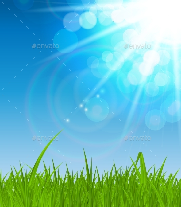 Natural Sunny Background Illustration - Landscapes Nature
