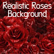 Realistic Roses Background - GraphicRiver Item for Sale