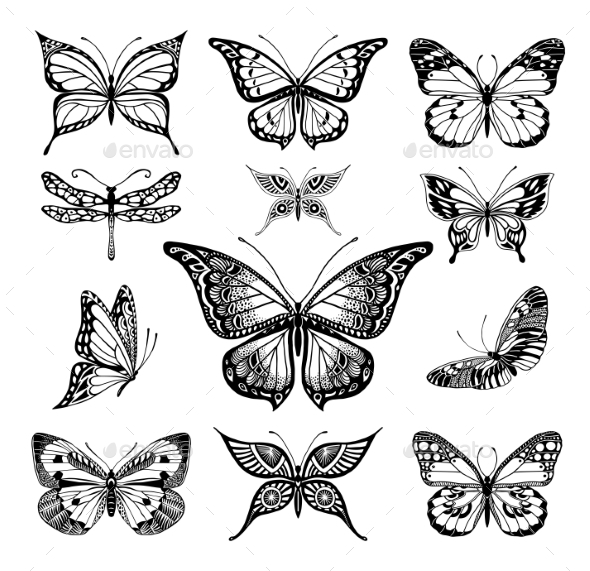 Butterflies Graphic Illustration - Tattoos Vectors