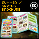 Summer / Spring Break Tri-Fold - GraphicRiver Item for Sale