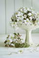 Still life with spring apple blossoms in vase - PhotoDune Item for Sale