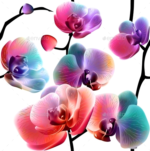Orchids Seamless Pattern - Backgrounds Decorative