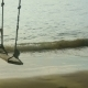 A Rope Swings On The Beach,  - VideoHive Item for Sale