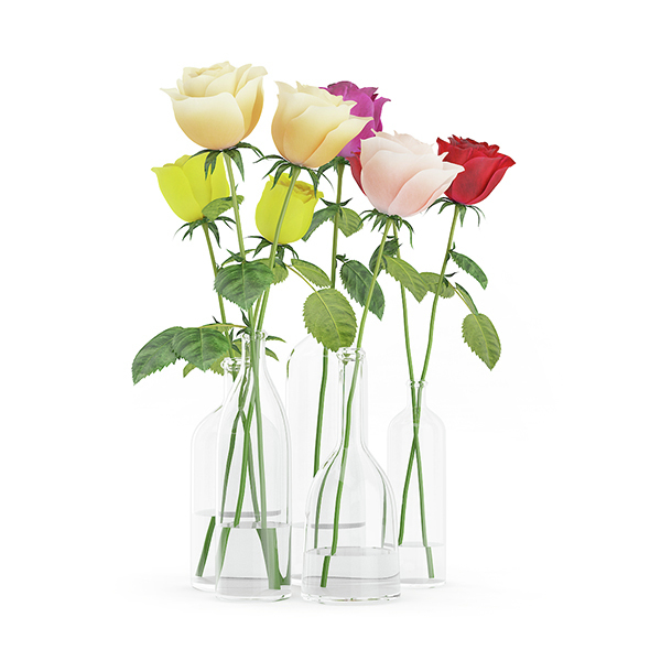 Roses in Glass Vases - 3DOcean Item for Sale