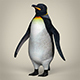 Low Poly Realistic Penguin