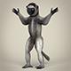 Low Poly Realistic Sifaka Lemur