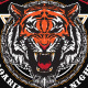 Panthera Tigris - GraphicRiver Item for Sale