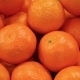 Ripe Tangerines Citrus Fruits - VideoHive Item for Sale