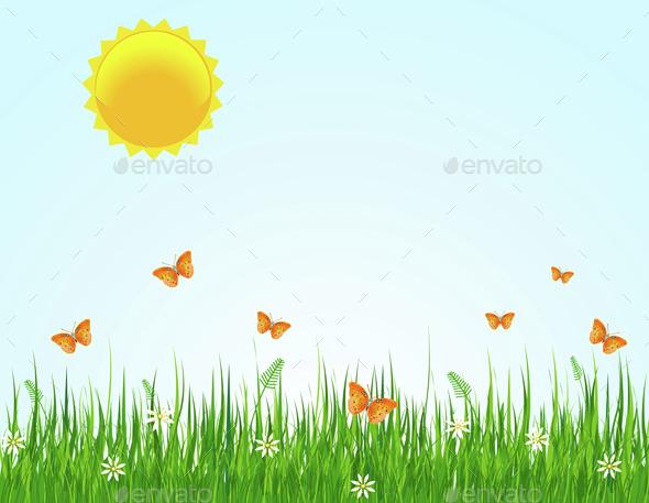 Summer Day - Landscapes Nature