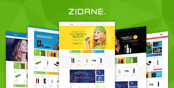 Zidane – Multi Concept Responsive Woocommerce WordPress Theme