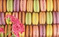 Macarons background - PhotoDune Item for Sale