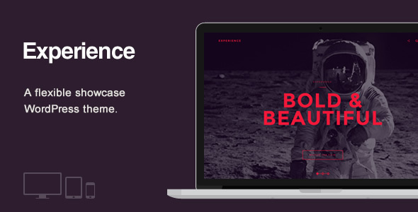 Experience – Showcase WordPress Theme