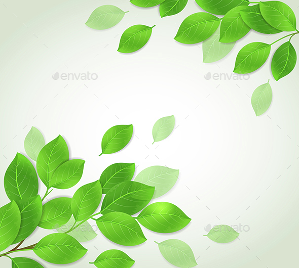 Background with Green Branch - Flowers & Plants Nature
